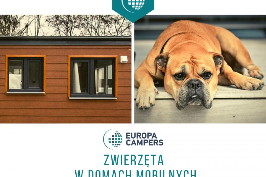 Zwierzęta w domach mobilnych Europa Campers.
